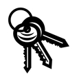 New keys simple icon vector image vector image