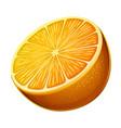 orange icon isolated on white background vector image vector image