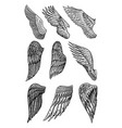 set angel wings in vintage style template vector image vector image
