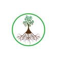 tree life tree natural round logo green tree vector image vector image