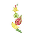 watercolor hand painted composition of vector image vector image