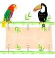 Poster and tropical birds vector image