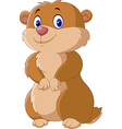 Cute Groundhog posing isolated on white background vector image