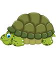 cute turtle cartoon walking vector image vector image