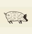 cuts pork pig butcher shop meat vector image