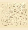 handmade work - set fruits and vegetables vector image