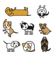 set of isolated icons puppies of different breeds vector image vector image