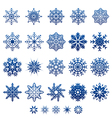 snowflake winter and christmas graphic icon vector image