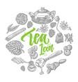 hand drawn tea elements set vector image