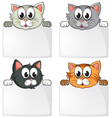 cute cats with blank papers vector image vector image