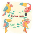 cute drawing flat tropical bird set colorful vector image vector image