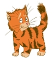 Cute Ginger Cat ector Of Pets vector image vector image
