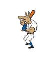 Donkey Baseball Player Batting Cartoon vector image vector image