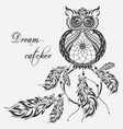 dream catcher owl white background vector image vector image