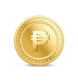Golden isolated peso coin on the white background vector image vector image