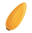 tasty corn icon cartoon style vector image vector image