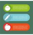 vegetarian infographics vector image