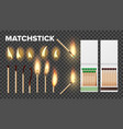 burning matches in matchbooks flame set vector image