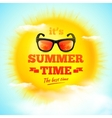 Its Summer Time typographic inscription with vector image vector image
