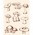 set of vintage forest mushrooms vector image vector image