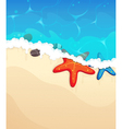 Tropical beach with starfish vector image vector image