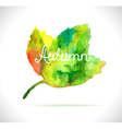 Watercolor leaf design element vector image
