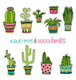 cactuse and succulent hand drawn set doodle vector image