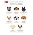 dogs by country of origin norwegian dog breeds vector image vector image