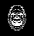 head angry ape in vintage monochrome style vector image vector image
