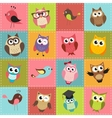 Patchwork background with owls vector | Price: 3 Credits (USD $3)