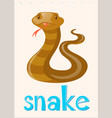 wordcard with wild snake vector image