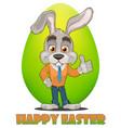 bunny 02 vector image