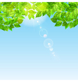 Blue sky with sun and green leaves vector image