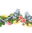 budgerigars parakeets on a branch vector image vector image