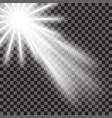 eps10 spotlight light effect vector image vector image