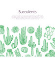 hand drawn wild cacti plants background vector image vector image