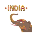 indian elephant with color pattern vector image