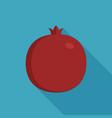 pomegranate icon in flat long shadow design vector image