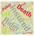 Term Life Insurance With Accidental Death And vector image vector image