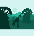african landscape with baobabs and walking giraffe vector image