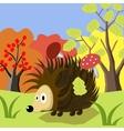 Animal Hedgehog cartoon vector image