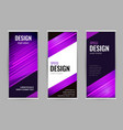 bright roll-up banner with purple lines on dark vector image