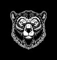 head grizzly bear in vintage monochrome style vector image