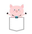 pig face head in pocket photo camera cute vector image
