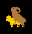 sheep sex fasrm animal intercourse animals vector image