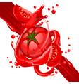 splash of tomatoes juice in motion vector image