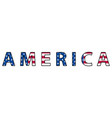 word of america symbol of the united states of vector image