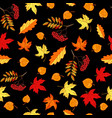 autumn seamless pattern with hand drawn leaves vector image