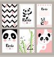 pandas invitation cards newborn cute animals vector image vector image