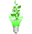 plant and bulb vector image vector image